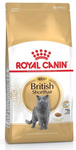 sklep zoologiczny Royal Canin Feline Breed British Shorthair 34 10kg