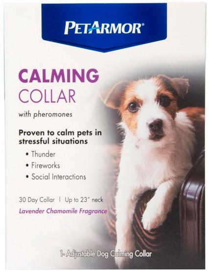 sklep zoologiczny Obroża feromonowa dla psa (uspokajająca) PetArmor